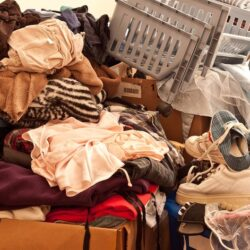 Organize Your Stuff Program
